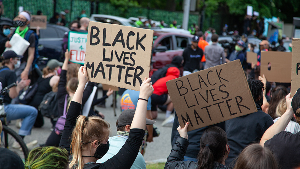 Image: Black Lives Matter movement has opened the door to the destruction of America